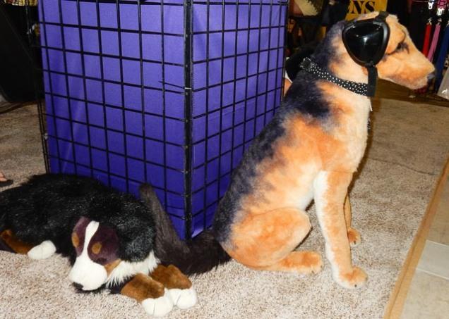 Hund mit Kopfhörer-Schutzz
